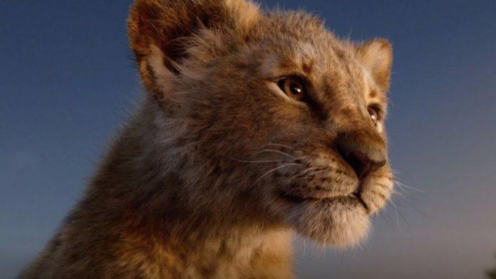 Il Re Leone, Simba