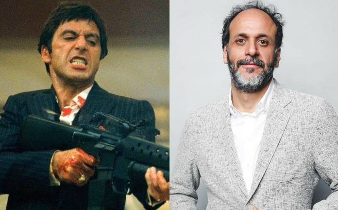 Scarface, Al Pacino, Luca Guadagnino